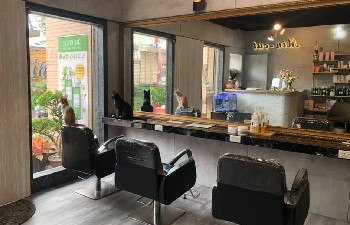 米諾髮藝 Min cut Hair salon