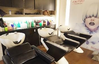 向陽髮型 Soleil-Salon 文衡總店